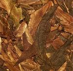 Чай Пуэр Цзы Я Е Шэн Бао Гу Шу Чха Ван Бин '08 №3600
