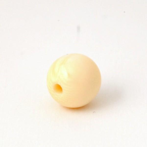БК013 Панцирь моллюска