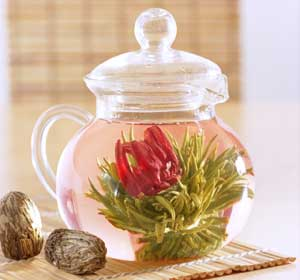 Распускающийся цветок чай