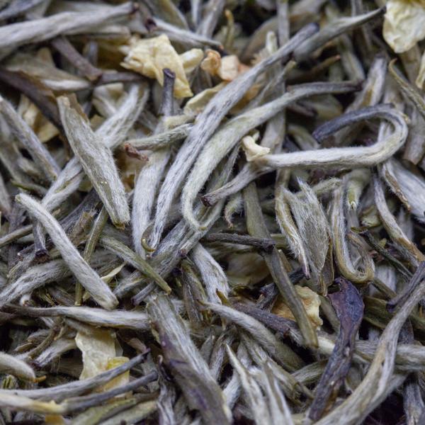 Чай Моли Хуа Цзинь Чжу Пяо Сюэ '21 №1600