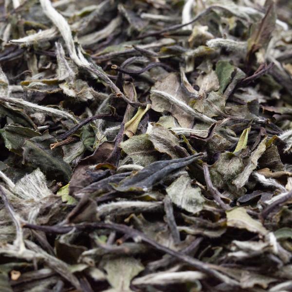 Чай Бай Му Дань '21 №480