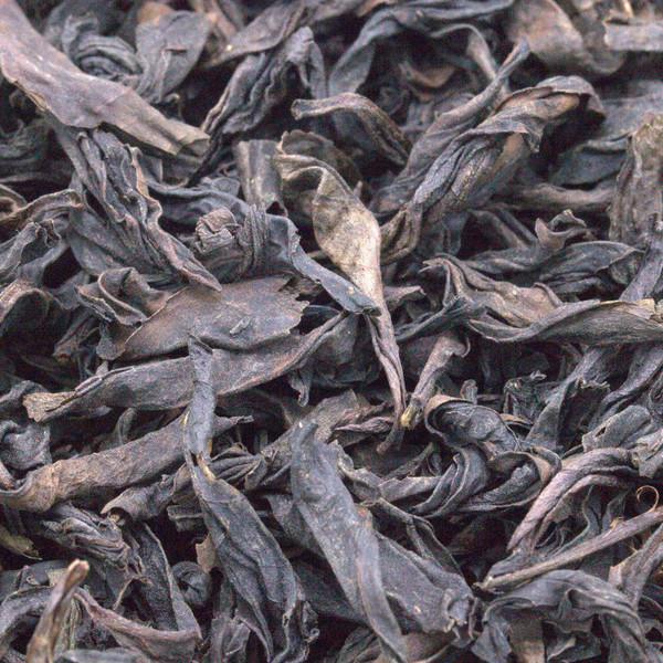 Гуй Хуа Сян Лао Цун '19 №1200